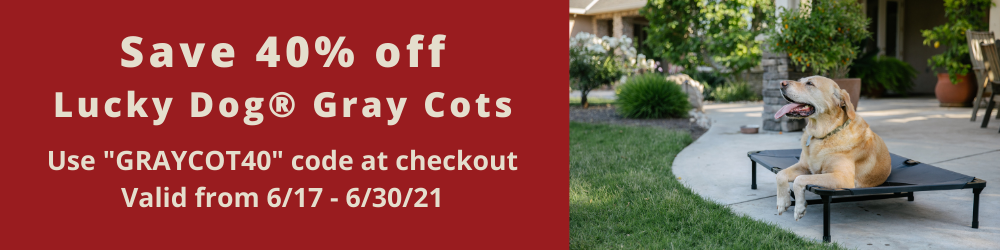 All Lucky Dog Gray Cots 40% off (6/17-6/30)